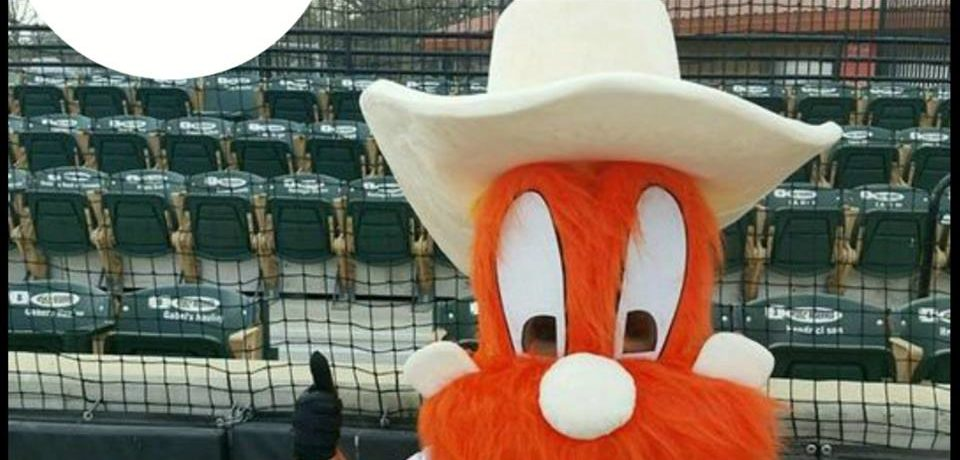 Homer Teams up with Haven Humane May 5th
